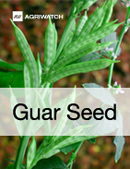 Fundamental  supply and demand analysis and forecast outlook of Guar Gum markets