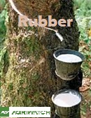 Fundamental  supply and demand analysis and forecast outlook of Rubber markets