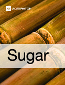 Fundamental  supply and demand analysis and forecast outlook of Sugar markets