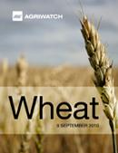Fundamental  supply and demand analysis and forecast outlook of Wheat markets